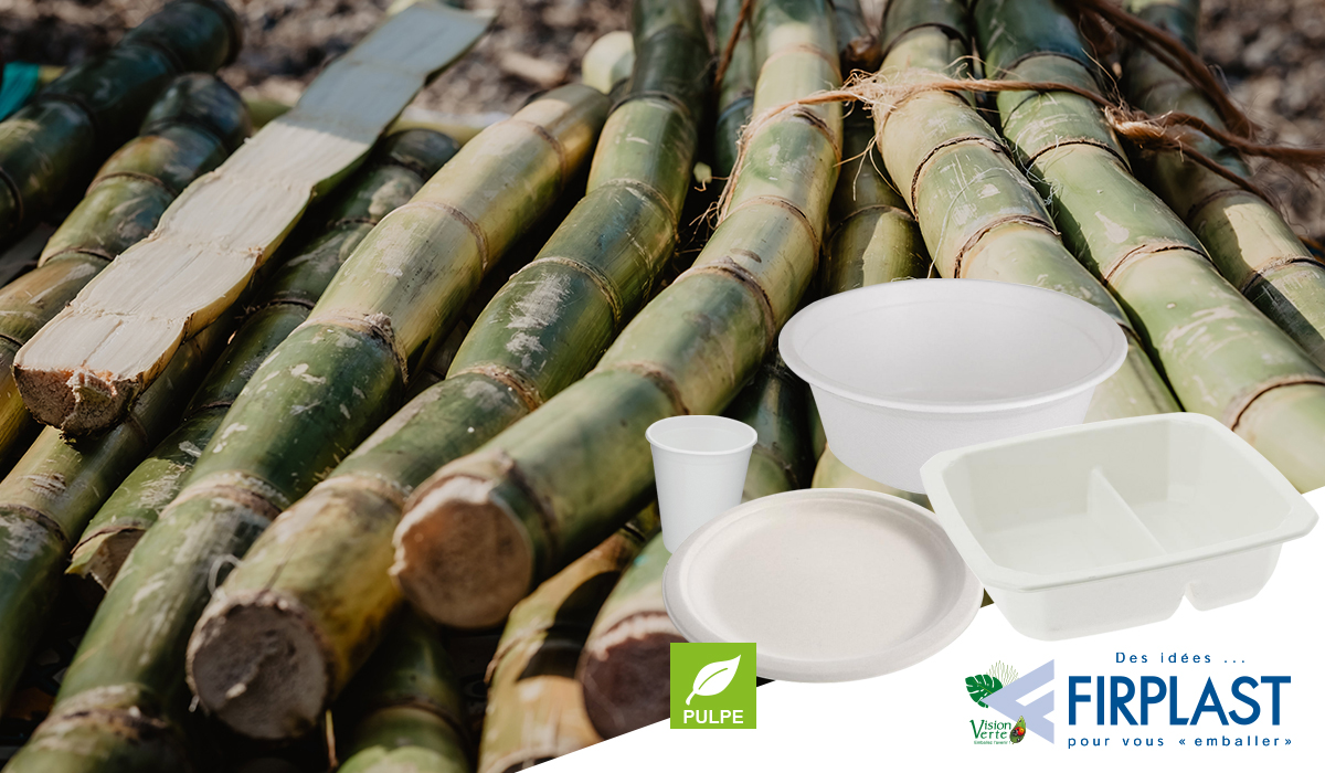 firplast_pulpe_biosource